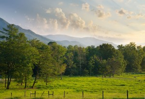 Photography Spots in the Great Smoky Mountains
