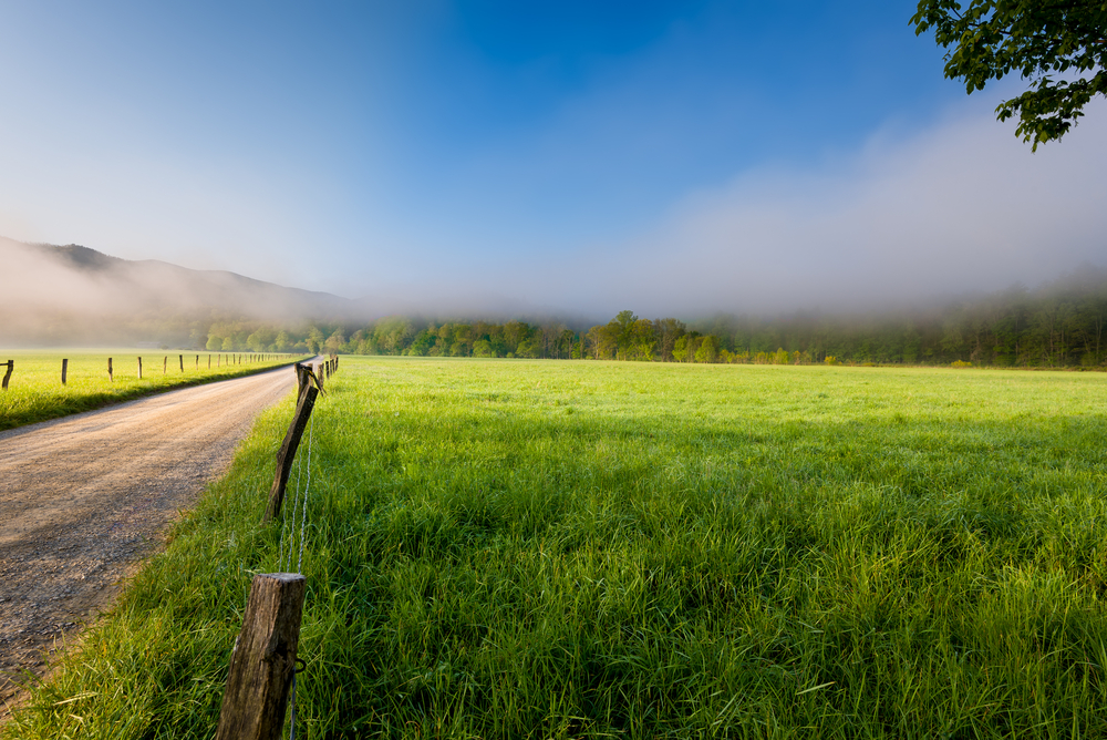 View of the road leading to Cades Cove in the Great Smoky Mountains National Park