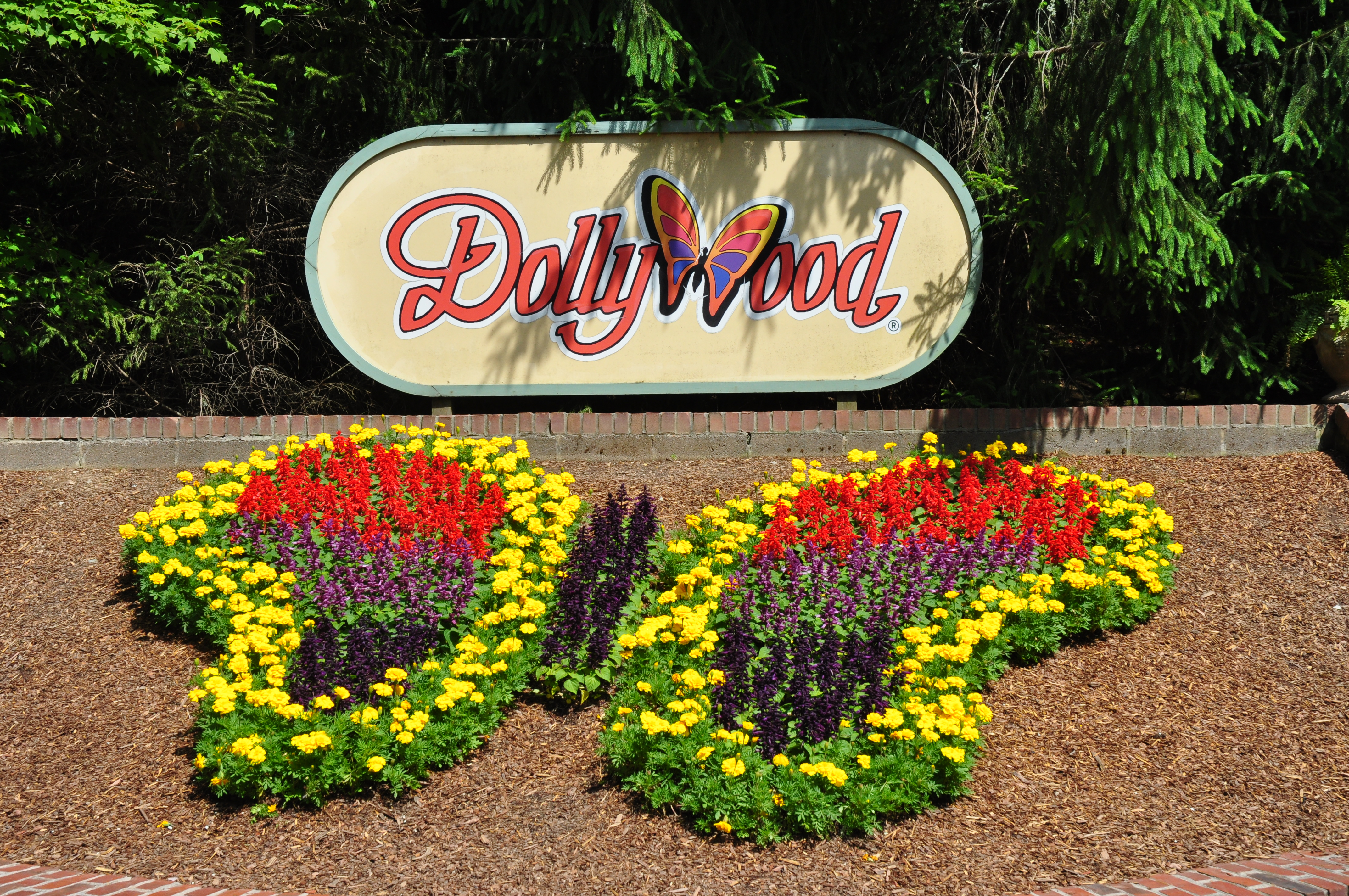 Dollywood's Barbeque & Bluegrass Festival