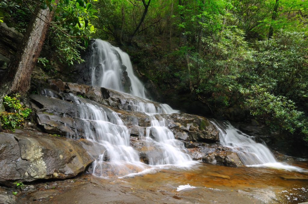 Laurel Falls is the perfect hike for families
