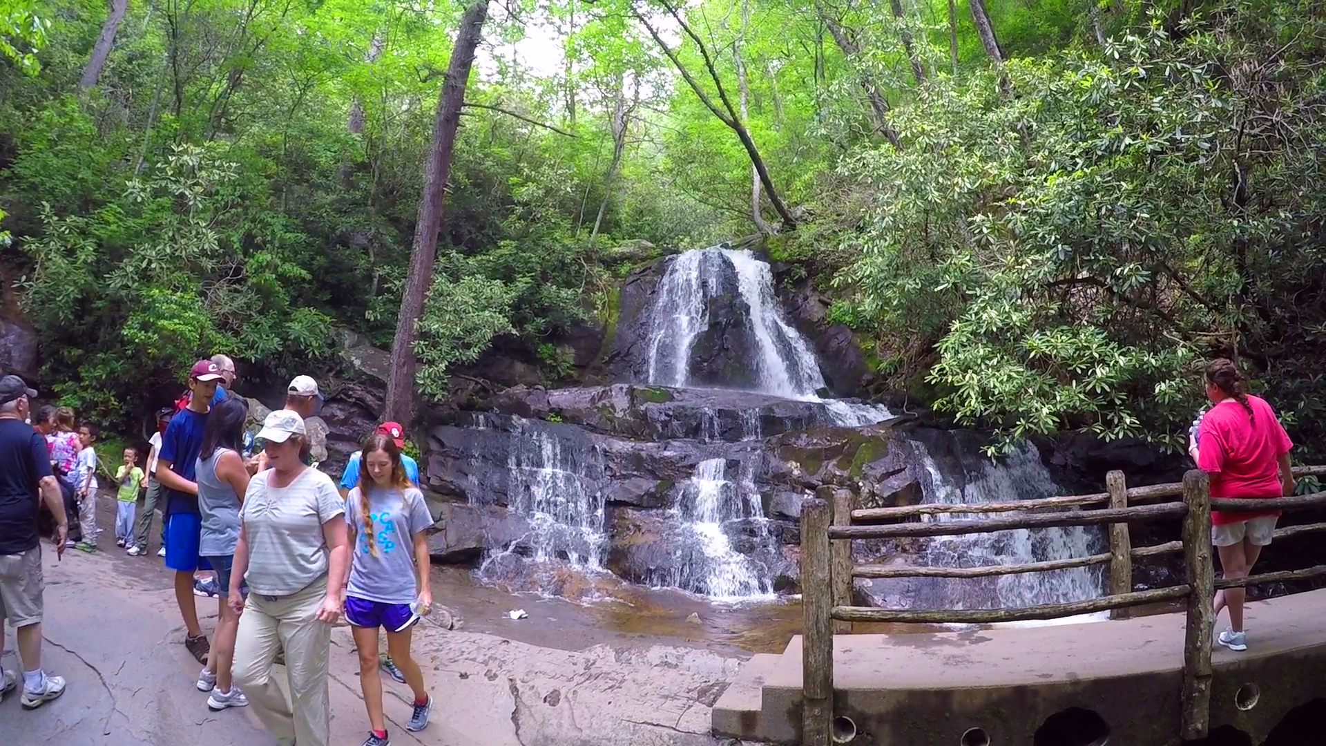 5 smoky mountain trails that are perfect for family hikes