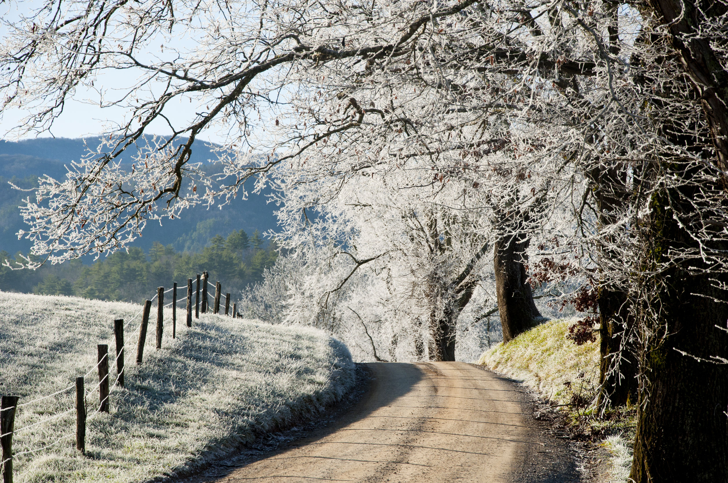 Cades Cove is the perfect winter things to do in the Smokies