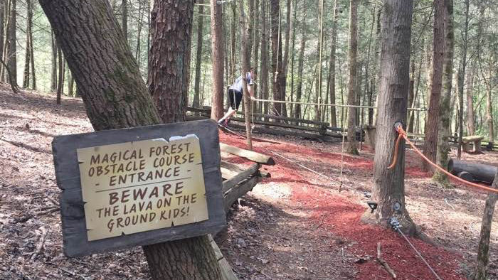 The low level obstacle course is a fun safe thing to do with children in the smokies