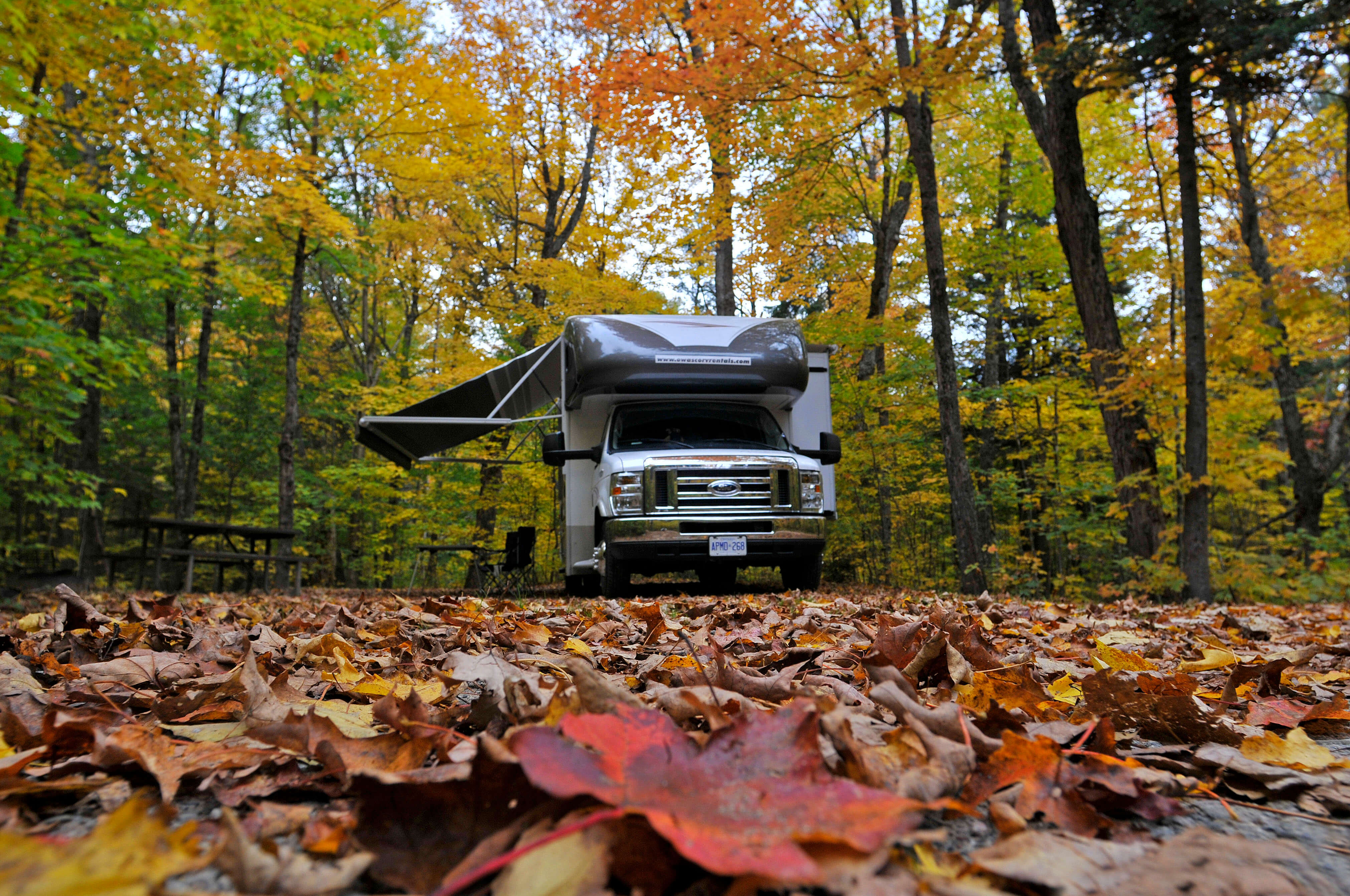 smoky mountain premier rv resorts in cosby